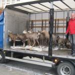 2013-10-12 LKW vor dem Jagdmuseum